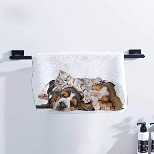 Funny Beach Towel Newborn Kitten Lying on The Puppies Basset Hound and Licks Sleeping Cuddle Picture for Family Guest Bathrooms Gym W27 x L12 Multicolor