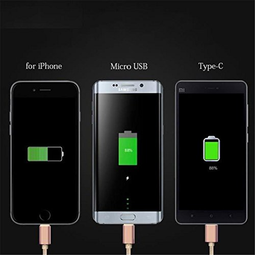 Silver USB 2.0 Type-C Micro Lighting Connector 3 in 1 Cable Fast Charger High Speed Charging Premium Copper Core 0.5M (19.68 Inch) Cables For Asus Zenfone C ZC451CG