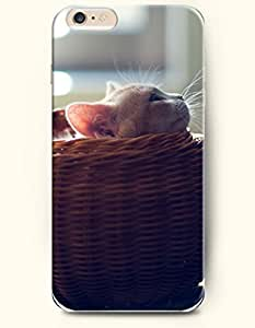 Case Cover For SamSung Galaxy S3 Cat Sitting in the Basket