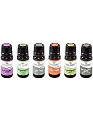 Top 6 Essential Oil Sampler Set. Includes 100% Pure, Undiluted, Therapeutic Grade Essential Oils of Lavender, Eucalyptus, Sweet Orange, Peppermint, Lemongrass and Tea Tree. 10 ml each