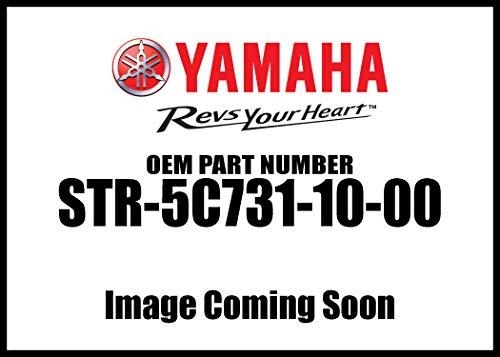 Genuine Yamaha O.E.M. Raider Chrome Engine Guards pt# STR-5C731-10-00