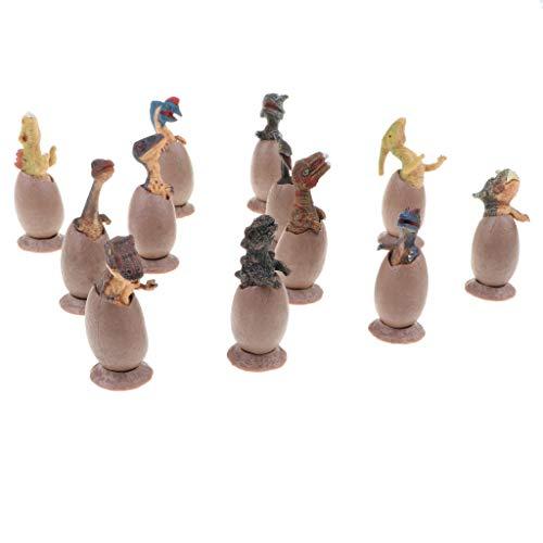 B Blesiya 全12点 プラスチック製 恐竜卵おもちゃ ハーフハッチ卵 模型 装飾用品