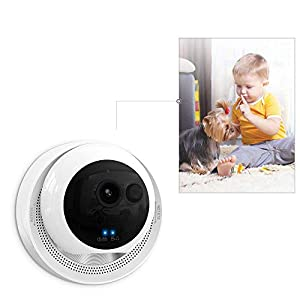 VStoy Dog Camera by 1080P Pet Monitor Indoor Cat Camera Night Vision 2 Way Audio Motion Detection Pet Camera and Home Indoor Surveillance Camera from VStoy