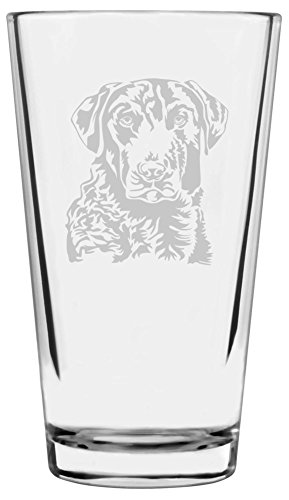 Chesapeake Bay Retriever Dog Themed Etched All Purpose 16oz Libbey Pint Glass
