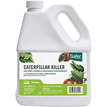 Safer Brand Caterpillar Killer Concentrate 1gal - 4 pack 5160GAL