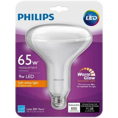 Philips Equivalent White Dimmable Effect