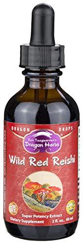 Dragon Herbs Wild Reishi Super Potency Extract – 2 Fl Oz