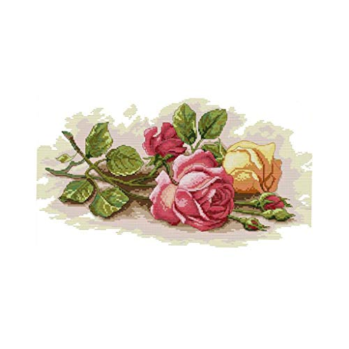 SM SunniMix Stamped Cross Stitch Kit Pre-Printed Colorful Rose Pattern Embroidery Kit - 56×34cm 11CT ()
