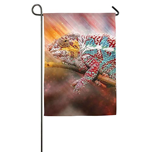 - HOOSUNFlagrbfa Gorgeous Animals Chameleon Garden Flag Indoor & Outdoor Decorative Flags for Parade Sports Game Family Party Wall Banner,1218inch
