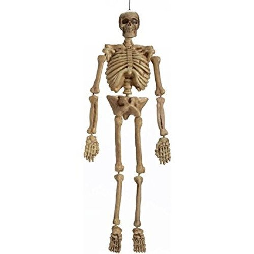 [Realistic Hanging Skeleton 5ft Life Size Halloween Decoration Prop] (Life Size Plastic Skeleton Halloween)