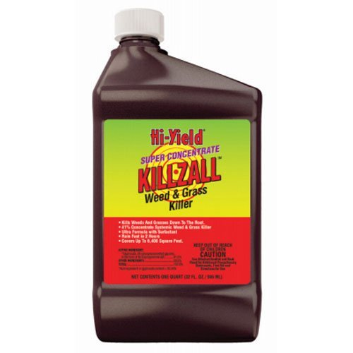 Fertilome 33692 Killzall Weed and Grass Killer, 32oz. Super Concentrate (Best Weed Killer On The Market)