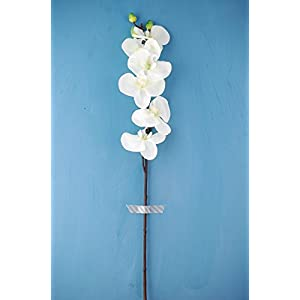 Phalaenopsis Orchid White 30in - Excellent Home Decor - Indoor & Outdoor 50