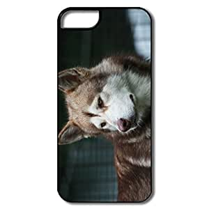 IPhone 5/5S Cases, Malamute Dog White/black Cases For IPhone 5