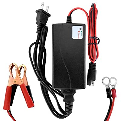 Banshee Lithium Motorcycle Battery Charger