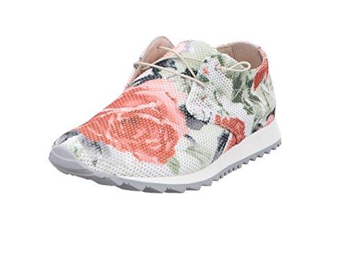 Multicolore 763 de Femme Chaussures à Ville Donna 003 Mehrfarbig 041 Carolina Pour Mehrfarbig Lacets 37 7xTYYqSE