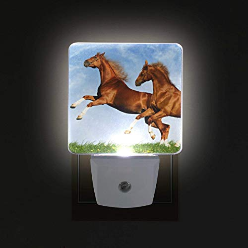 xiaodengyeluwd 2 Pack Two Horses Frolic On The Plain Plug in LED Night Light Auto Sensor Dusk to Dawn Decorative Night for Bedroom, Bathroom, Kitchen, Stairs,Baby's Room, Energy ()