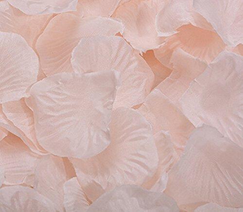 2000 Silk Roses - Ewandastore 2000 PCS Silk Rose Petals Artificial Flower Wedding Party Flower Decoration Bridal Shower Favor Centerpieces Confetti(Champagne)