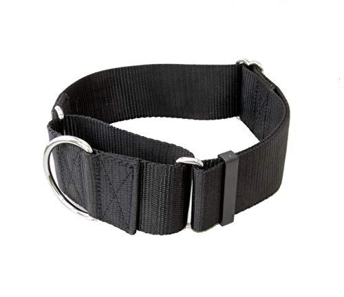 2 Inch Martingale Dog Collars - Heavy Duty Nylon (2