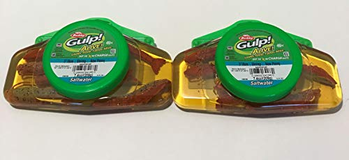 Gulp! Alive! 3 inch Shrimp New Penny Berkley 2 jar Bundle Salt Water Fishing ()