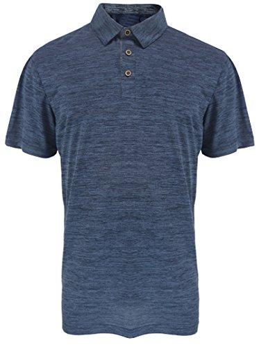 (Leehanton Men's Performance Golf Polo Shirts Regular-Fit Quick-Dry Athletic Short Sleeve T-Shirts (Navy, L))