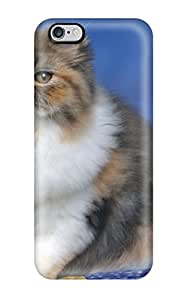 carlos d archuleta's Shop 1673771K66236197 New Style Tpu 6 Plus Protective Case Cover/ Iphone Case - Persian Calico Kitten