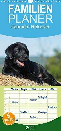 Labrador Retriever 2021 - Familienplaner hoch (Wandkalender 2021, 21 cm x 45 cm, hoch)