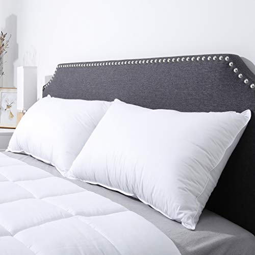 LANGRIA Luxury Hotel collection Bed Pillows Plush the way down optional Sleeping Pillow 100 Cotton Cover gentle pleasant Hypoallergenic Dust Mite tolerant Queen 20 x 30 2 Pack