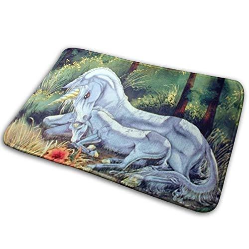 Ghgbm Mythical Unicorn Horse Sue Dawe Fantasy Art Print Non-Slip Memory Foam Bath Mat Absorbent Super Cozy Velvet Bathroom Rug Carpet ()