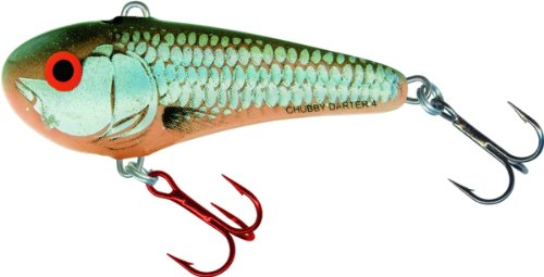 Salmo CD3-SBR Chubby Darter Lure, Silver/Black/Red, 1 1/3-Inch (Fishing Lures Salmo)
