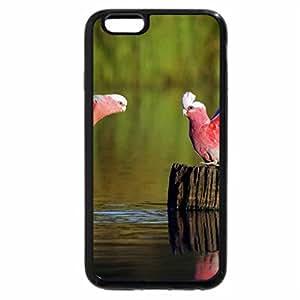 iPhone 6S / iPhone 6 Case (Black) loros