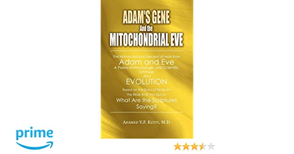 Adam's Gene and the Mitochondrial Eve: A Nonincestuous Descent of