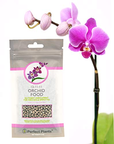 Orchid Food by Perfect Plants - Slow