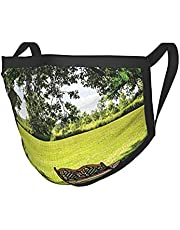 Farm House Decor Wooden Bench Under Lush Majestic Aged Shady Tree In Summer Park Hot Day Fresh Scene Green Brown Reusable Face Adult Dust And Cold Mask