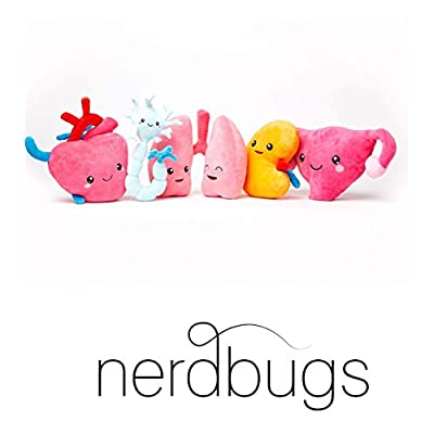 nerdbugs Kidney Plush - Urine for a Treat!- Large Kidney Plush Organ Toy/ Kidney transplant gift/ Health education gift/ Dialysis gift: Toys & Games