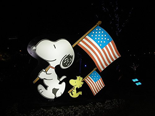 Home Comforts Framed Art for Your Wall Woodstock Patriotic American Flag Snoopy Patriotism 10x13 ()