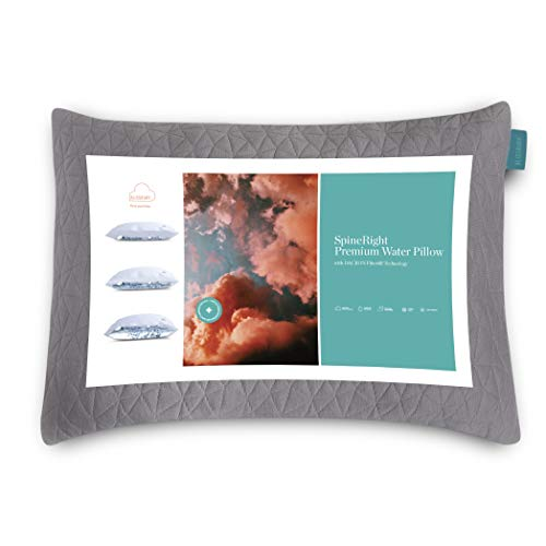 BLISSBURY SpineRight Adjustable Water Pillow