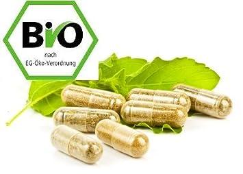 1 Packung BIO Astragalus Vega-Kapseln, Tragantwurzel, Astragalus membranaceus Kapseln - 60 x 400mg Vegi-Kapseln
