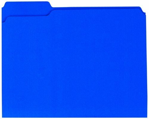 Globe-Weis Colored File Folders, 1/3 Cut, Reinforced Tab, Letter Size, Blue, 100-Count (13034GW) by Globe Weis