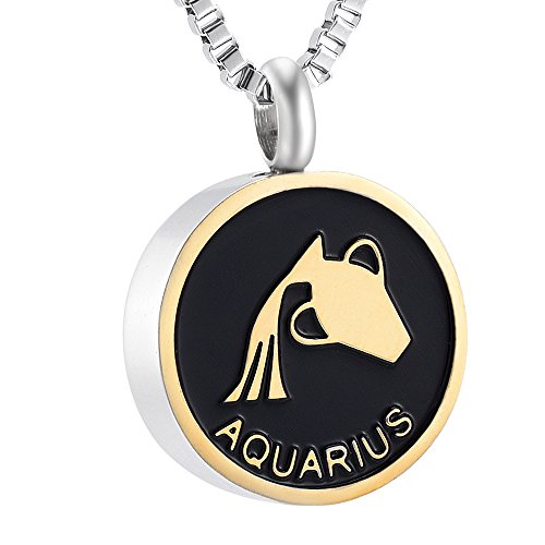 Constellations Cremation Urn Necklace Ashes Holder Keepsake Souvenir Charm Pendant Memorial Jewelry (Aquarius) (Place Steel Aquarius Stainless)