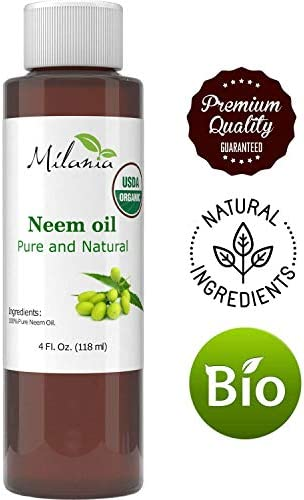 Premium Organic Excellent Quality Shipping product image