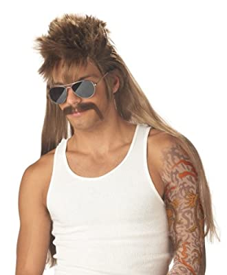 California Costumes Men's Mississippi Mudflap Wig & Moustache