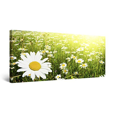 STARTONIGHT Canvas Wall Art Daisy, Flowers Framed Wall Decor 24