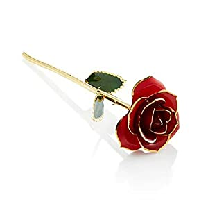 Never Fade Natural Fresh Flower Trimmed 24K Gold Blue Rose With Gift Box as Gift of Friendship Valentine's Day Christmas Wedding Engagement(Red) 101