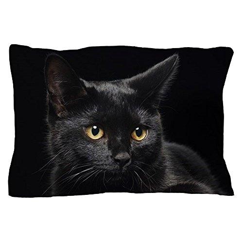 CafePress Black Cat Standard Size Pillow Case, 20