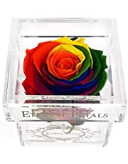 Eternal Petals Real Rose That Last One Year - Rose Gift - The Perfect Unique Gift for Women and Men, A Birthday Gift