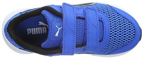 Puma Ps Descendant V4 V, Zapatillas de Deporte Exterior para Niños Azul Royal