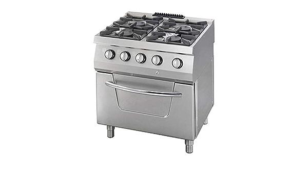 Hornillo de 4 quemadores, incluye horno, gas: Amazon.es ...