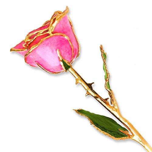 Pink Rose Gold Trim (Long Stem Dipped 24K Gold Trim Pink Genuine Rose in Gold Gift Box)
