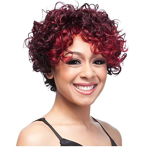 (Wine Red None Lace Wigs Short Body Wave Synthetic for Women L Part Shaped with Natural Hairline Jet Party (a))