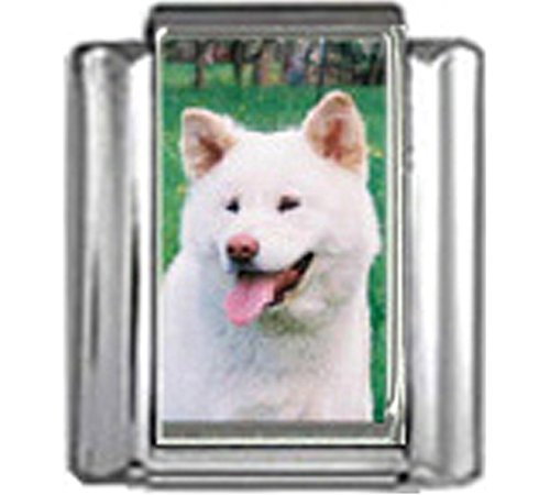 - Stylysh Charms Akita Dog Photo Italian 9mm Link DG029